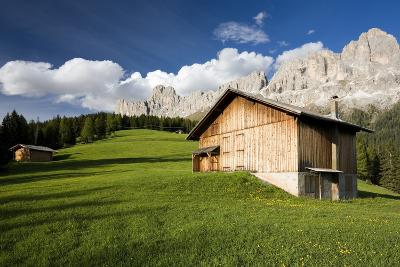 Italy, South-Tyrol, Rose-Garden, Mountain Hut, Mountain-Meadow, Mountain Scenery, Nature-Rainer Mirau-Photographic Print