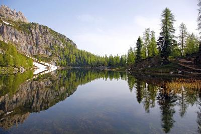 Italy, the Dolomites, South Tyrol, Cortina D'Ampezzo, Lago Di Federa, Trees, Reflection-Alfons Rumberger-Photographic Print