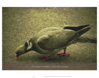 Its Not Against Any Religion to Want to Dipose of the Pigeon-Graham Rhodes-Art Print