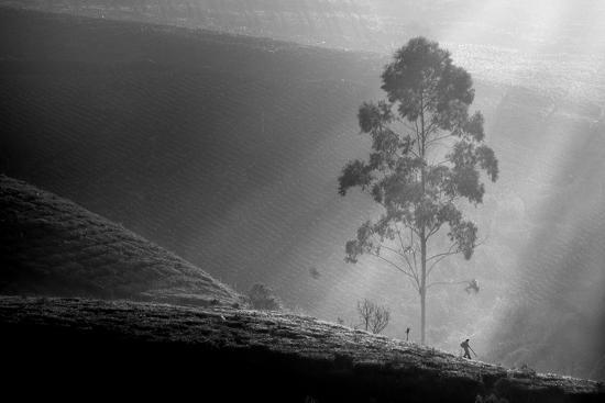 Itself on a Long Journey-Saelanwangsa-Photographic Print