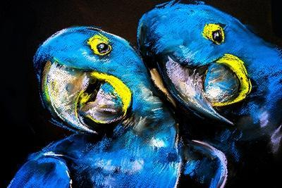 Pastel Painting of a Blue Parrots on a Cardboard. Modern Art