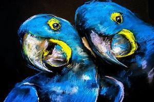 Pastel Painting of a Blue Parrots on a Cardboard. Modern Art by Ivailo Nikolov