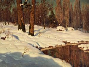 Snowscape, 1881 by Ivan Fedorovich Choultse
