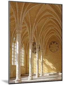 Abbey of St; Jean Des Vignes, Soissons, Aisne Department, Picardy, France by Ivan Vdovin