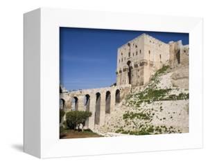 Aleppo Citadel, Syria by Ivan Vdovin