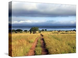Landscape, Murchison Falls National Park, Uganda, East Africa by Ivan Vdovin