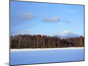 Winter Landscape, Suda, Vologda Region, Russia by Ivan Vdovin