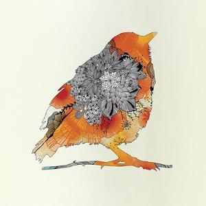 Orange Bird by Iveta Abolina