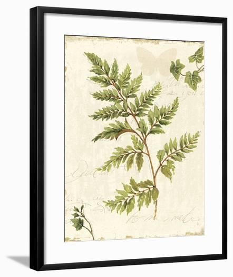 Ivies and Ferns I no Dragonfly-Lisa Audit-Framed Art Print