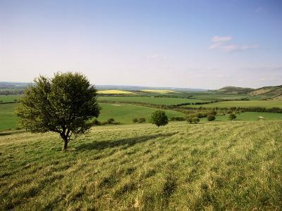 Ivinghoe Beacon from the Ridgeway Path, Chiltern Hills, Buckinghamshire, England-David Hughes-Photographic Print