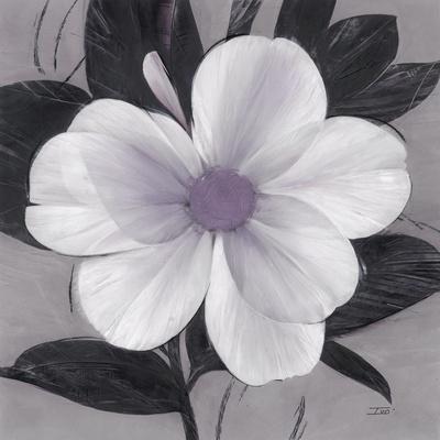 Sorbet Bloom 1