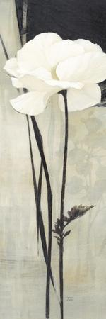 https://imgc.artprintimages.com/img/print/ivoire_u-l-pzj1b20.jpg?artPerspective=n