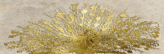 Ivory Coast Peacock-Sheldon Lewis-Art Print