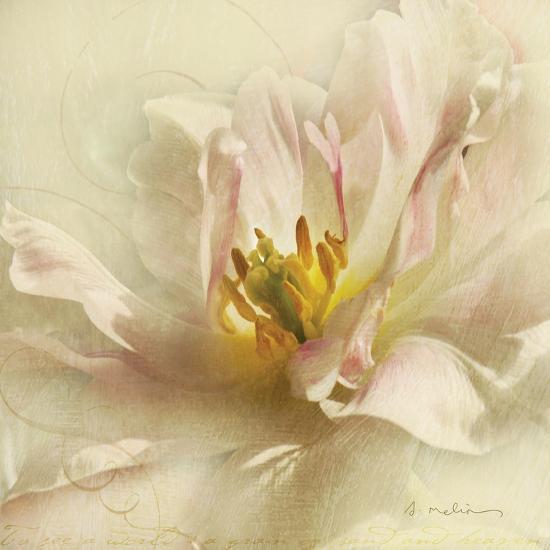Ivory Romance II-Amy Melious-Art Print