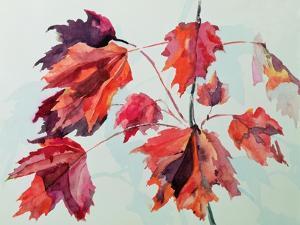 No.24 Autumn Maple Leaves by Izabella Godlewska de Aranda