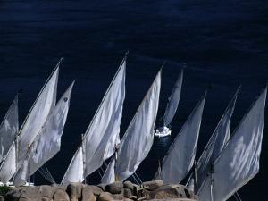 Fellucas Sailing, Aswan, Egypt by Izzet Keribar