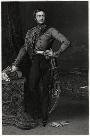 Hrh Prince Albert, 19th Century
