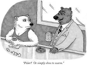 """Polar?  Or simply slow to warm."" - New Yorker Cartoon by J.C. Duffy"