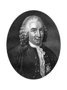 Carolus Linnaeus, 18th Century Swedish Botanist, Physician and Zoologist by J Chapman