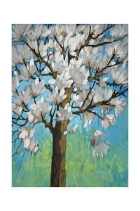 Magnolia in Bloom 1 by J Charles