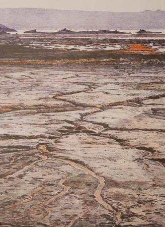 Mono Lake Mudflats