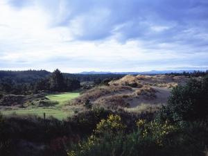 Bandon Dunes Golf Course, Hole 2 by J.D. Cuban