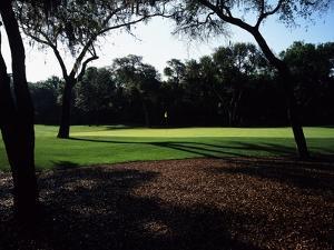 Turtle Point Golf Course, Hole 12 by J.D. Cuban