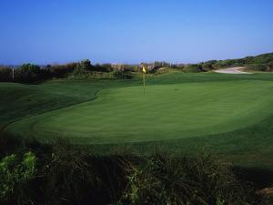 Turtle Point Golf Course, Hole 14 by J.D. Cuban