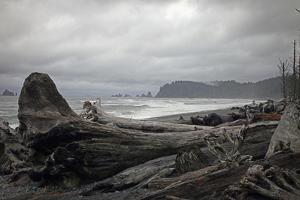 Beach by J.D. Mcfarlan