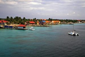 Bonaire 4 by J.D. Mcfarlan