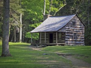 Cabin by J.D. Mcfarlan