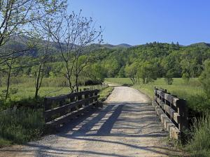 Country Road by J.D. Mcfarlan