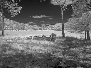 Field by J.D. Mcfarlan