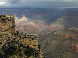 Grand Canyon II by J.D. Mcfarlan