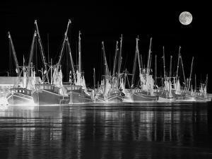 Shrimp Boats Asleep by J.D. Mcfarlan