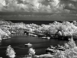 St. Lucia by J.D. Mcfarlan