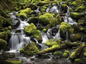 Waterfalls by J.D. Mcfarlan