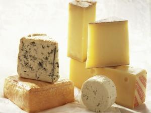 Various Types of Cheese by J.-F. Hamon