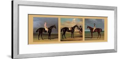 Equestrian Panel