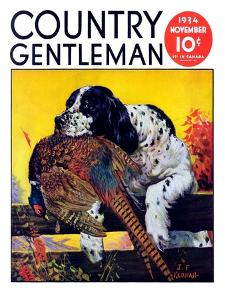 """Retriever with Pheasant,"" Country Gentleman Cover, November 1, 1934 by J^F^ Kernan"