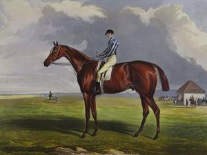 English Racehorses by J. Ferneley