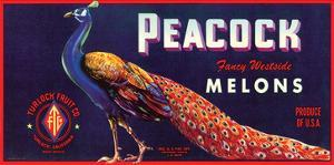 Peacock Melons by J.H. Smith
