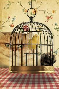 Cat Series #4 by J Hovenstine Studios