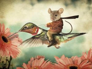 Catching A Ride On A Hummingbird's Back by J Hovenstine Studios