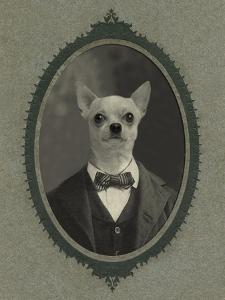 Dog Series #1 by J Hovenstine Studios
