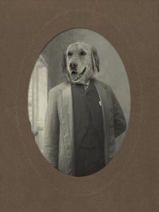 Dog Series #2 by J Hovenstine Studios