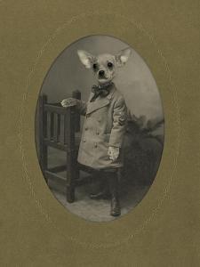 Dog Series #3 by J Hovenstine Studios