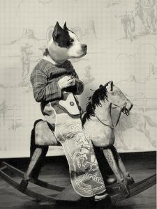 Dog Series #4 by J Hovenstine Studios
