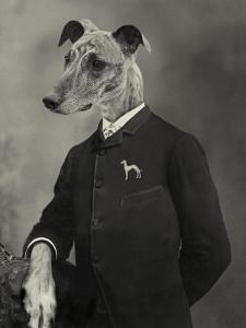 Dog Series #6 by J Hovenstine Studios