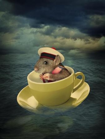 Mice Series #4.5 by J Hovenstine Studios